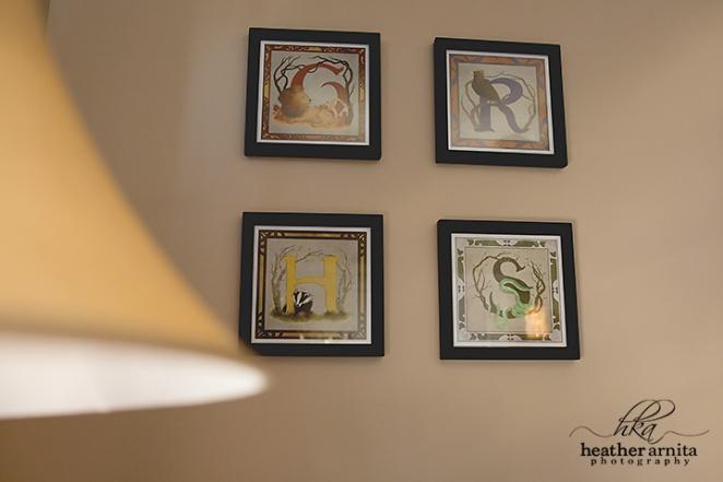 columbus ohio newborn photography harry potter nursery  house seigns