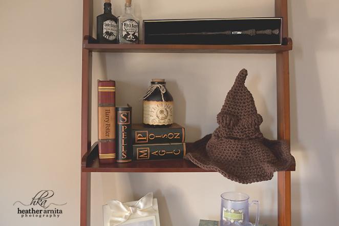 columbus ohio newborn photography harry potter nursery sorting hat