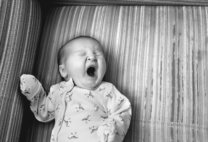 columbus ohio fresh 48 B family yawn on chair black and white facebook