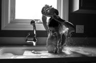 sink-bath-24-web